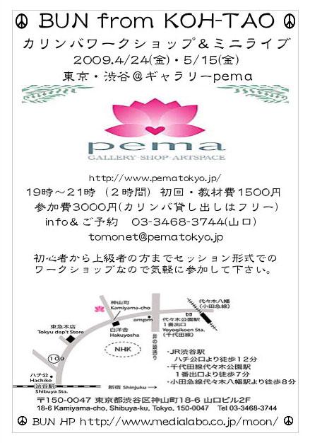 pemaワーク.jpg